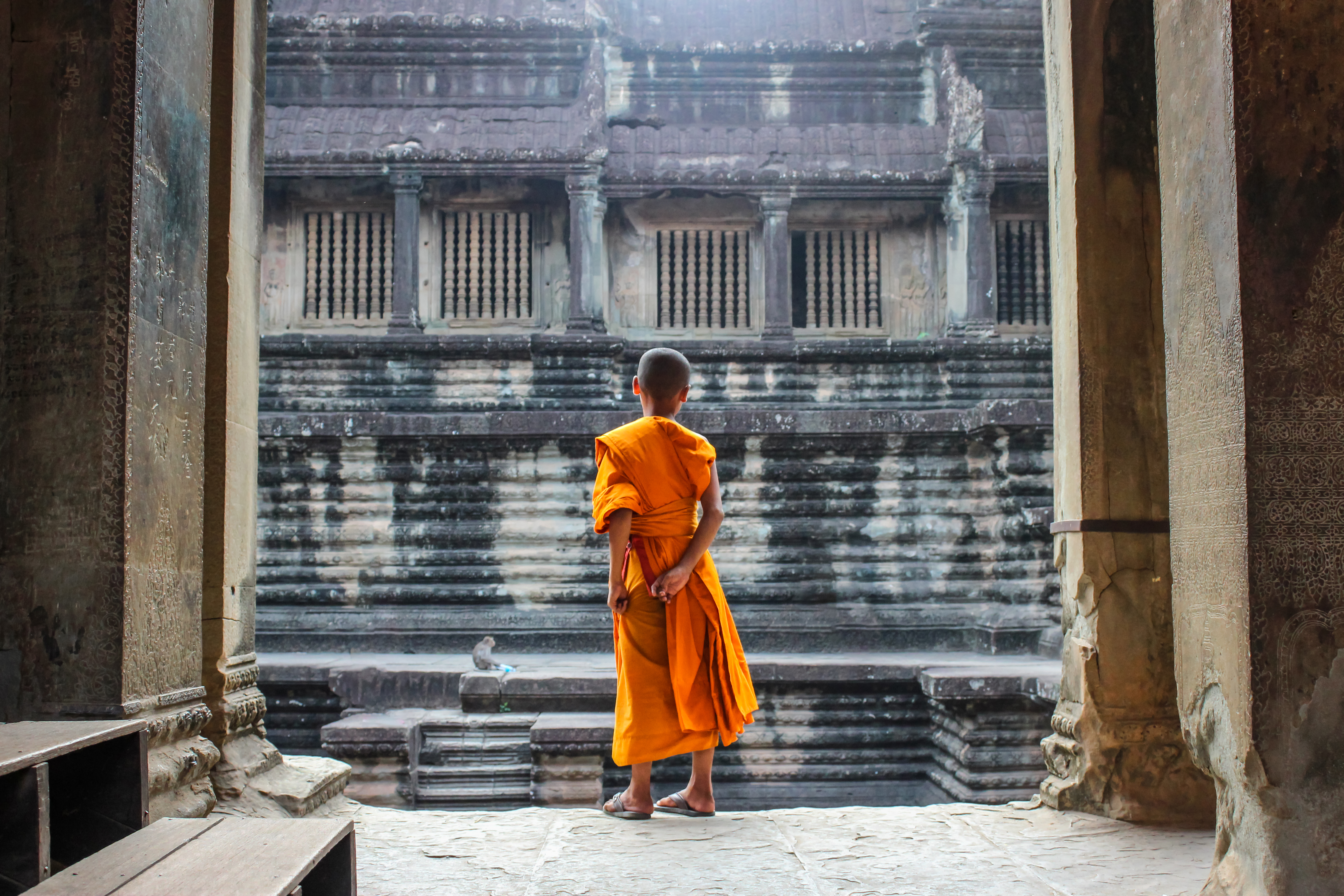 a young monk stands alone in a temple watching a monkey in the distance