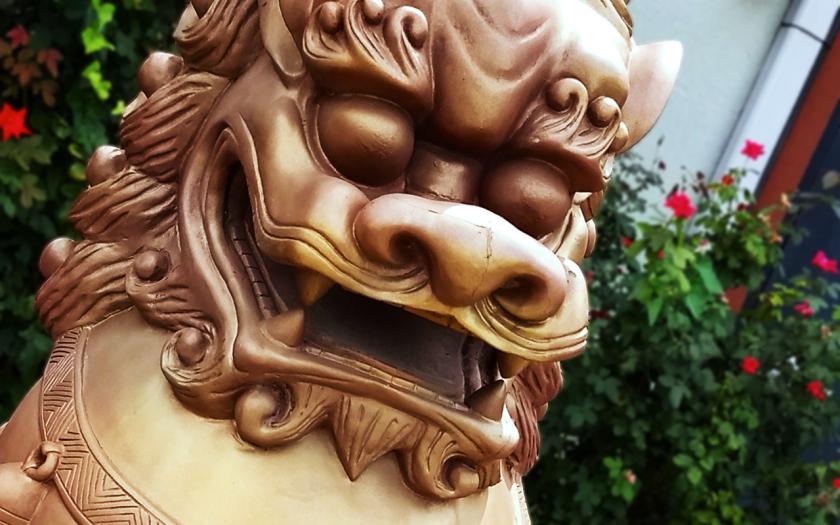 golden Chinese lion dog head