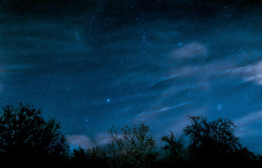 photo of a blue night sky with treetops at the bottom and the pleiades constellation overhead